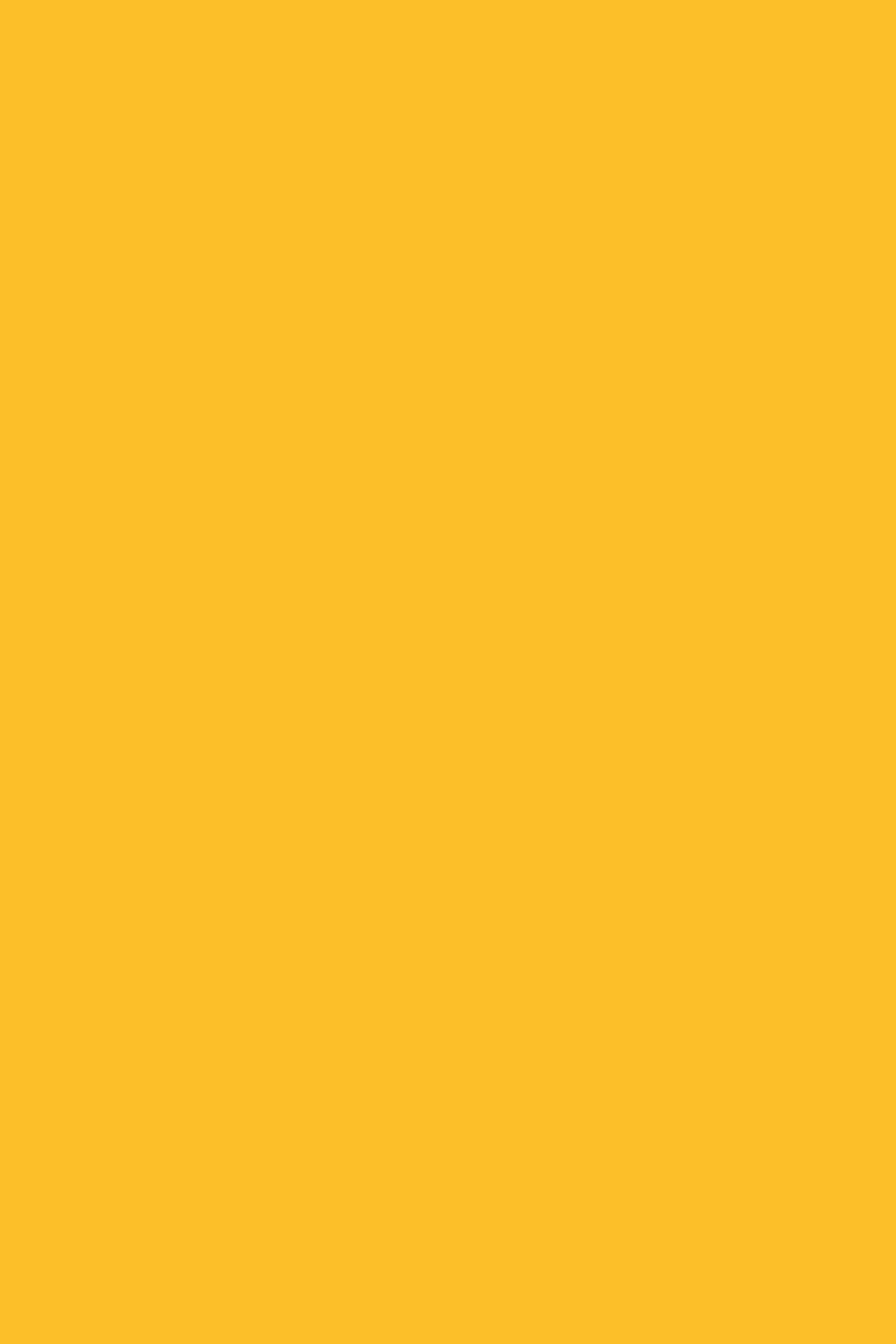 0134BS Солнечный Свет