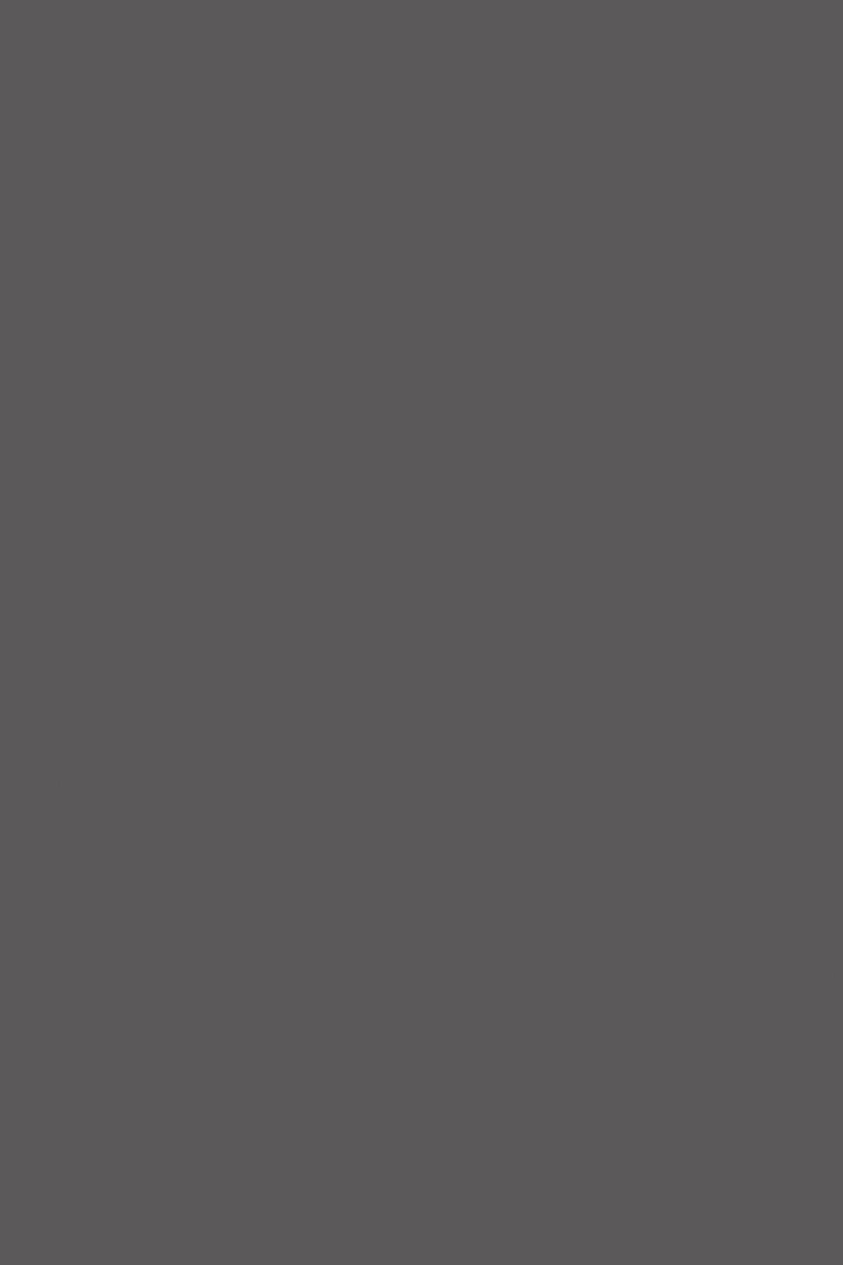 0162PE;BS Серый Графит
