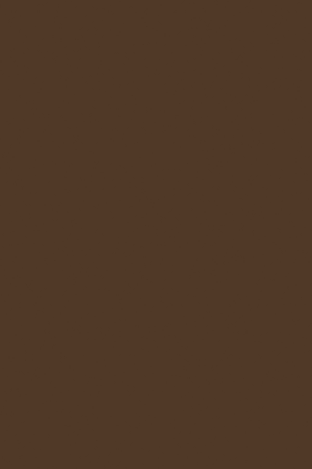 0182BS Темный Коричневый