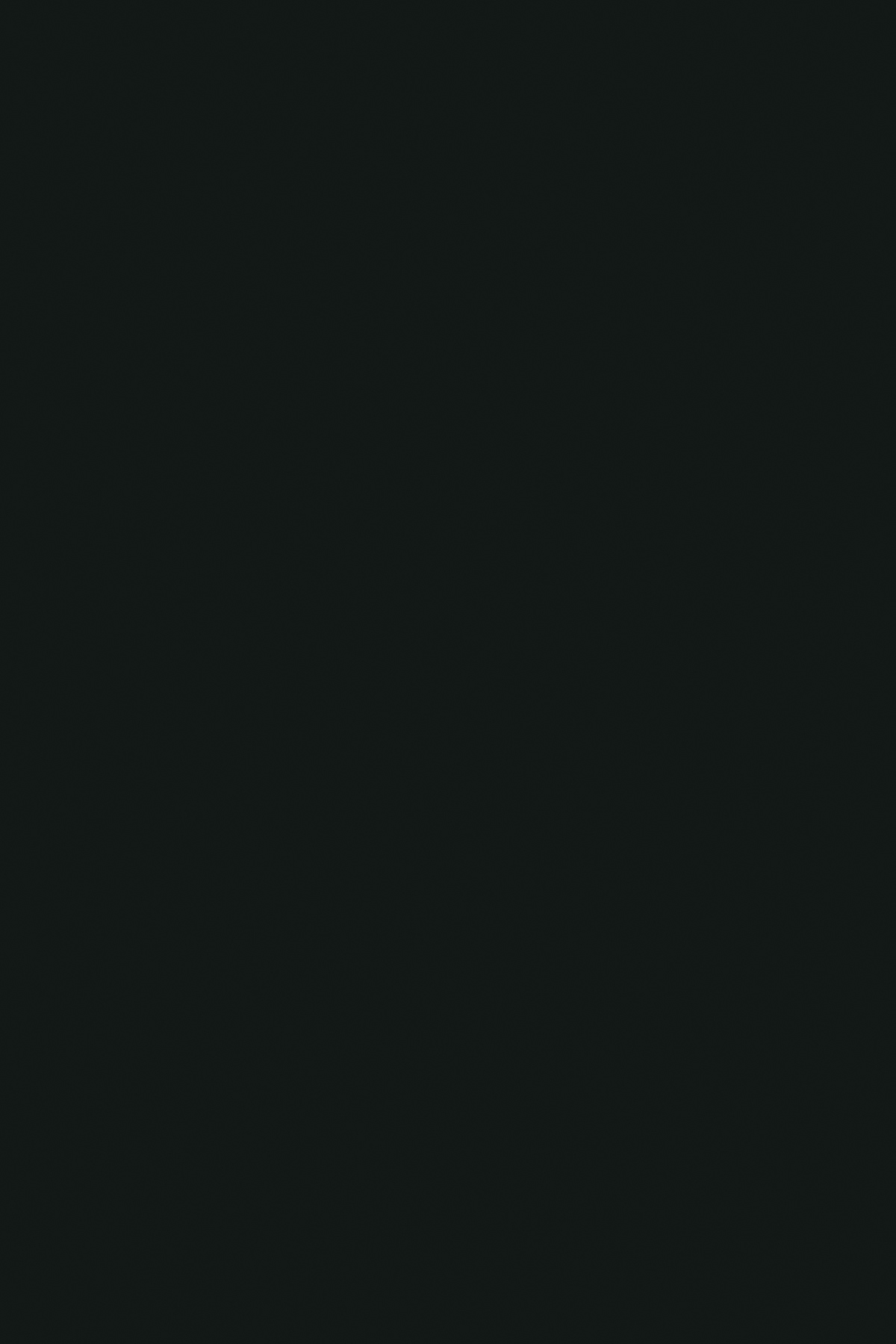 0190PE;MG;AG;AM;BS Черный