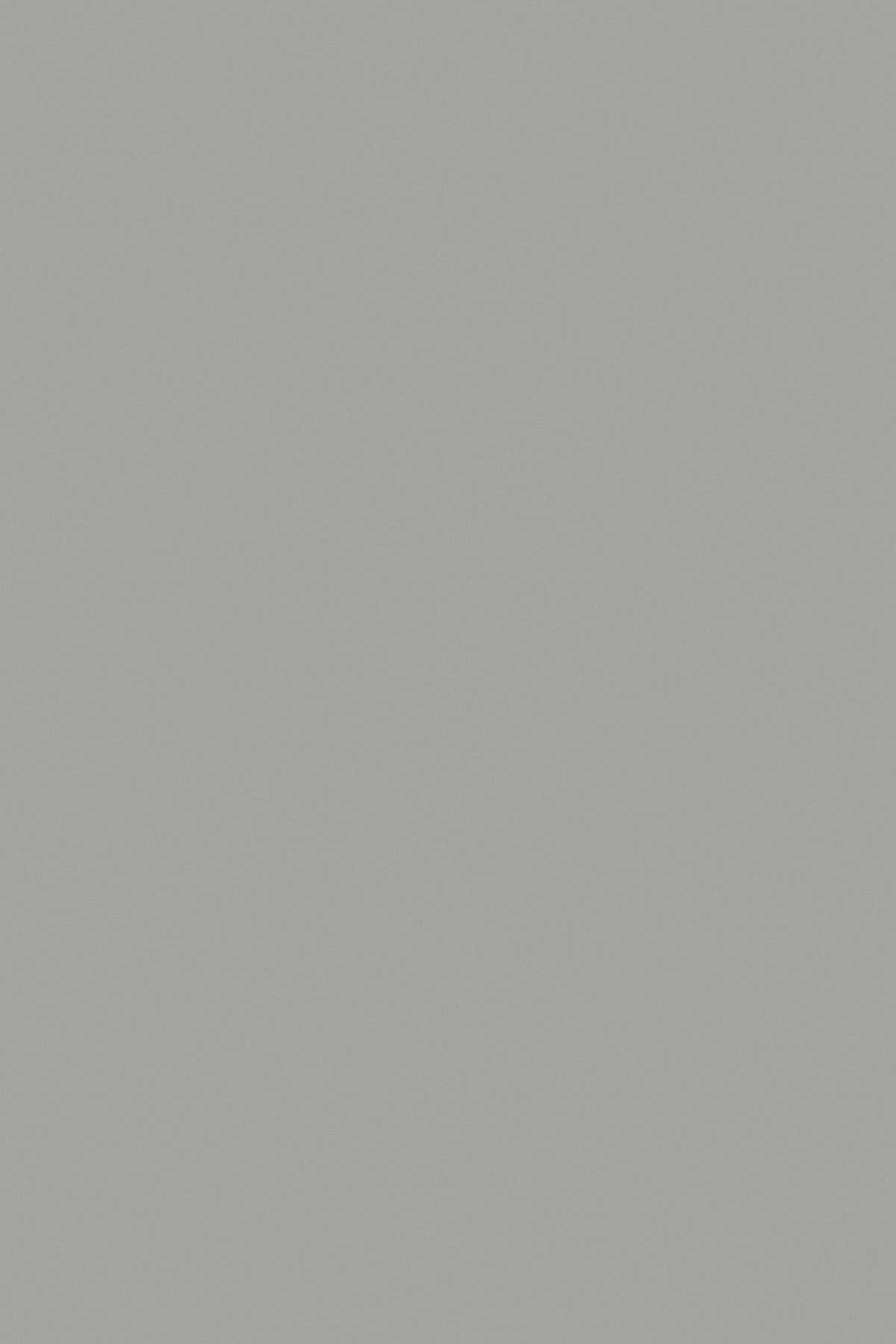 0197SU;BS Шиншилла Серая