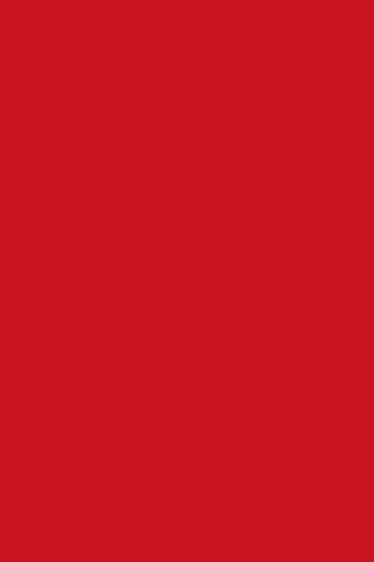 7113BS Красный Чили