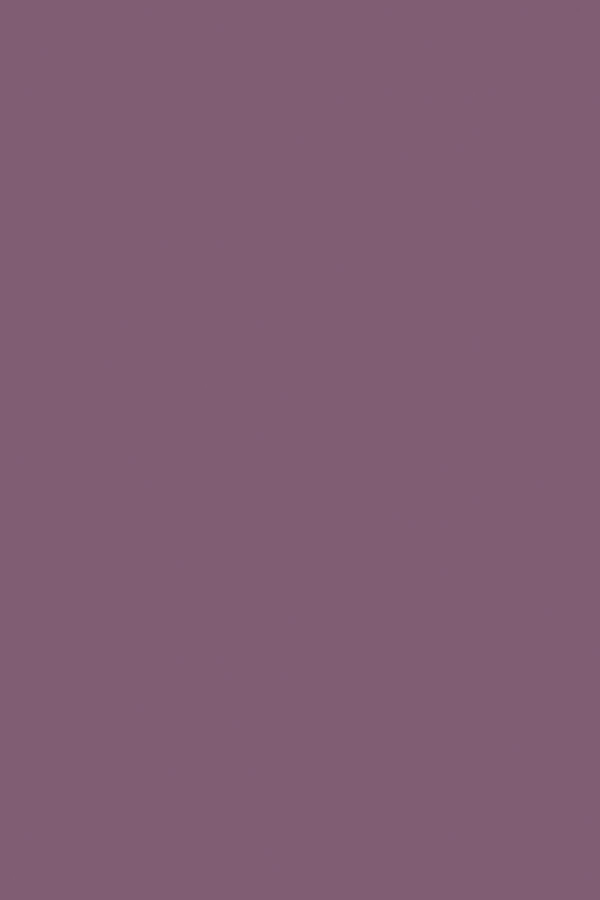7167SU Виола