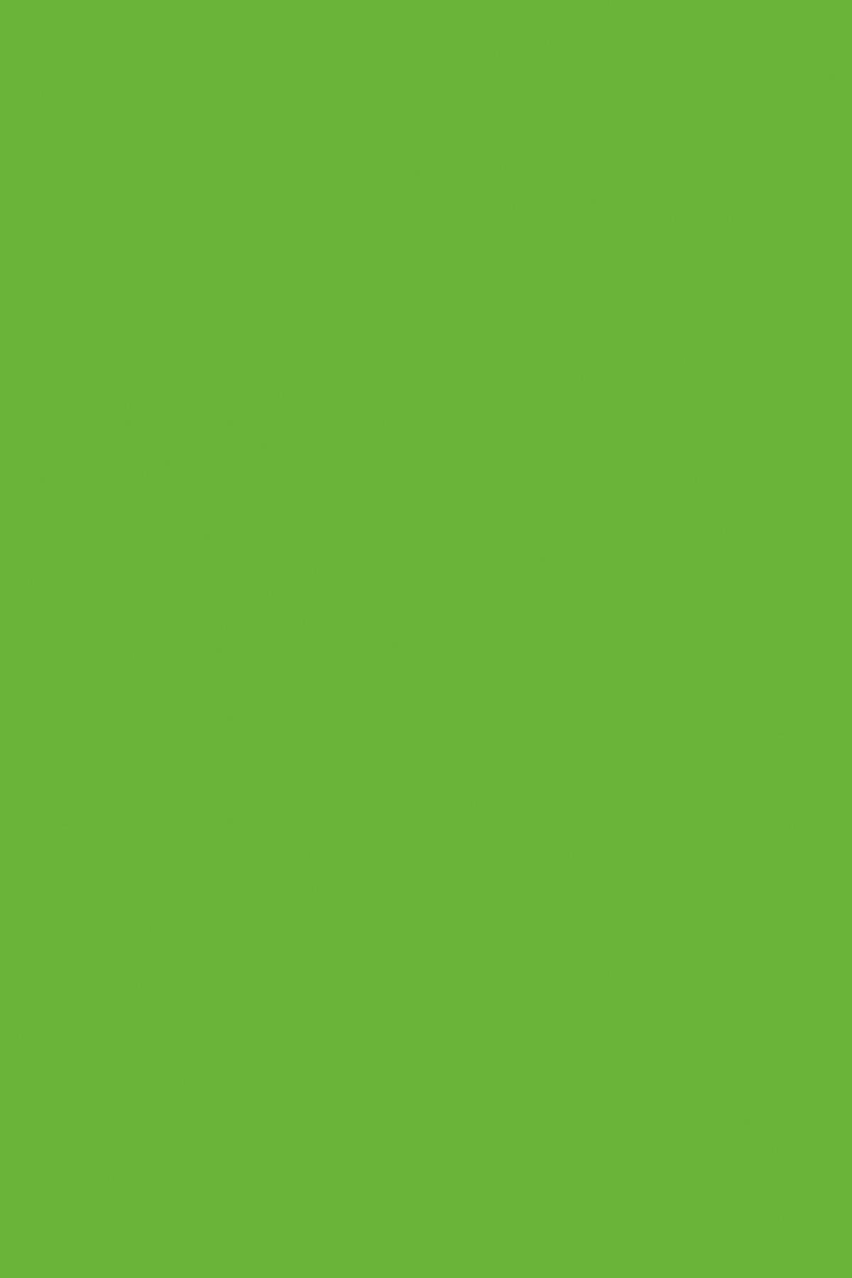 7190BS Зеленая Мамба