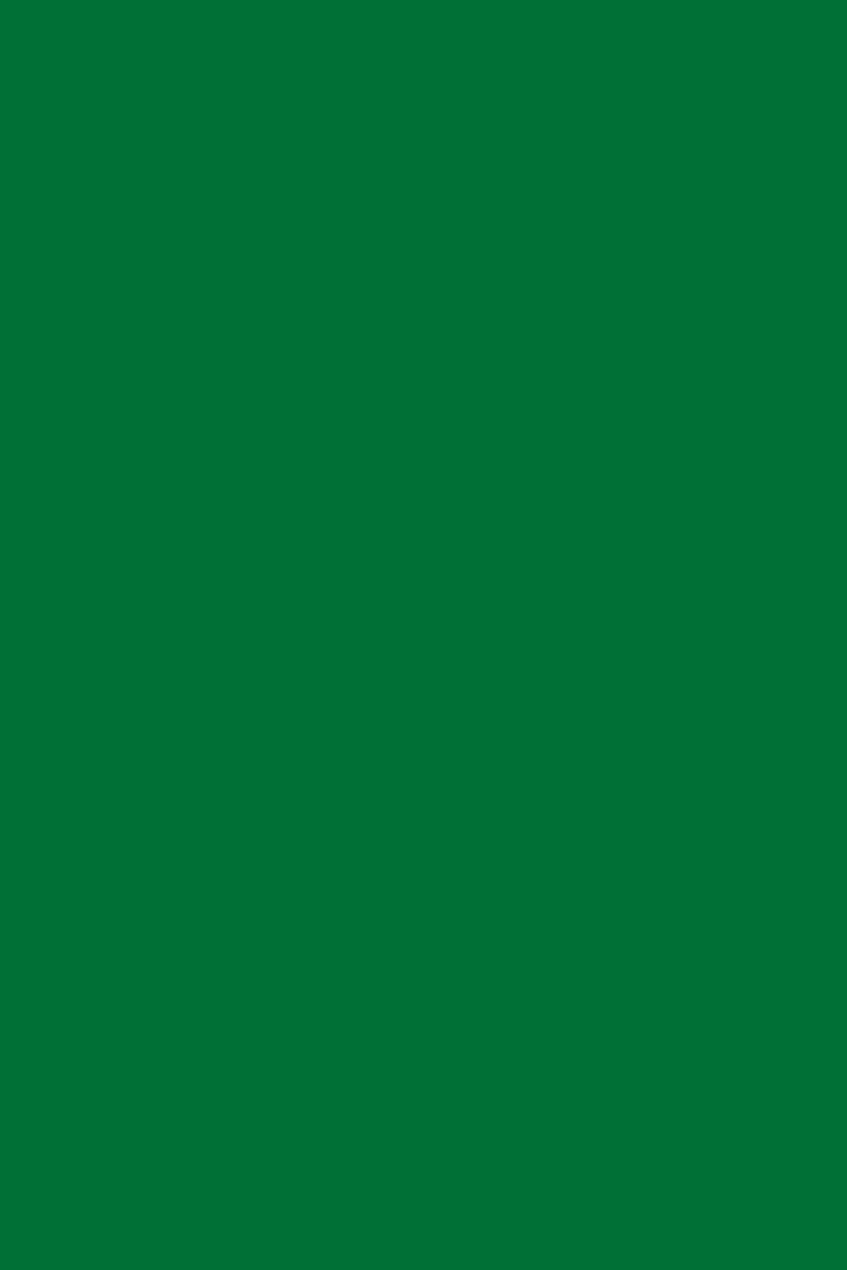 9561BS Зеленый Оксид