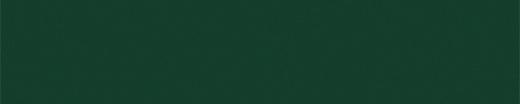 Зеленый лес U606 St9 Кромка ПВХ 19,0*2