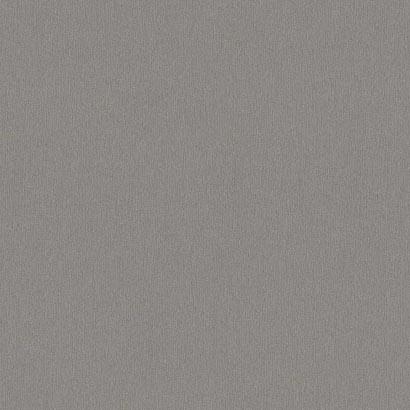 Алюминий матированный (Титан) F 501 ST2 2800*2070*10 (Эг)