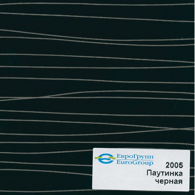 2005 Паутинка черная