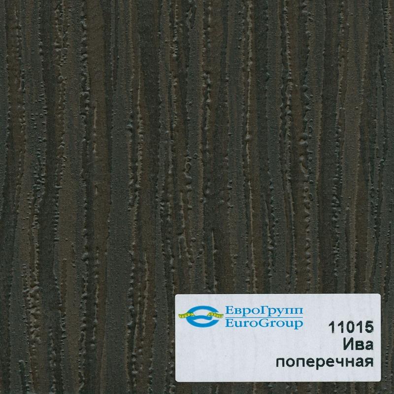 11015 Ива поперечная